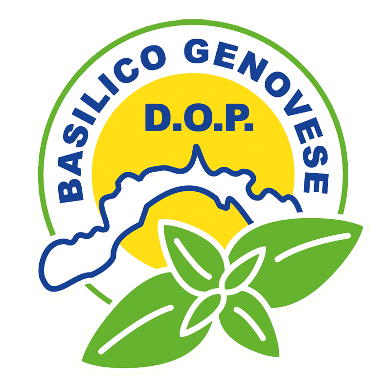 compagnia del pesto genovese_basilico genovese dop